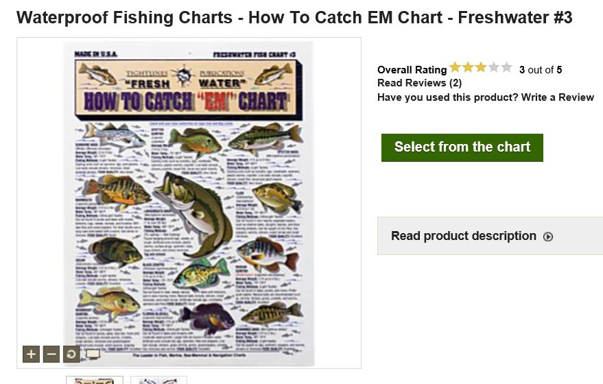 how to catch finicky bass